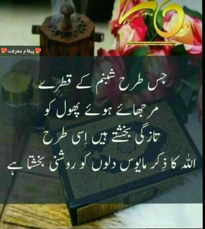 Pin by ѕƴєɗα υzzι on ︶°•Islam & Quran•°︶ Poetry feelings