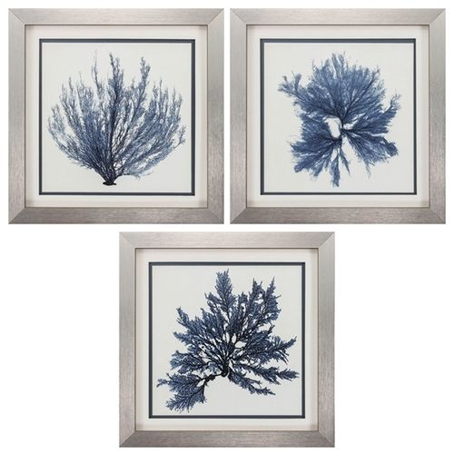 Silver Framed Coral Blue Wall Art Set Of 3 Gallery Frame Set Blue Wall Art Coastal Prints
