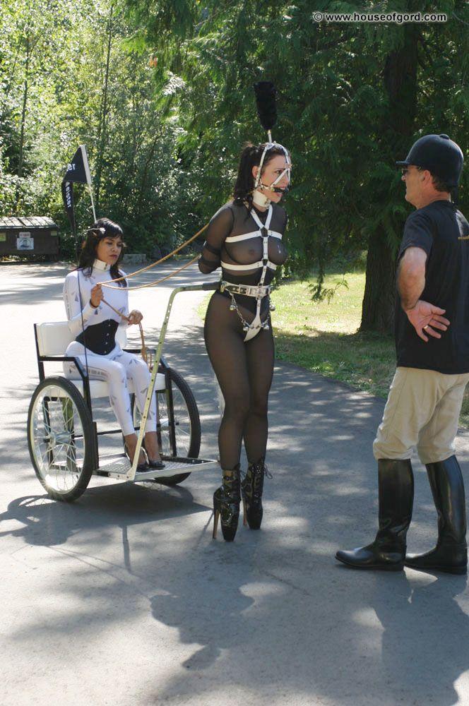 Ponygirl ballet boot harness collar corset   ponygirl ...