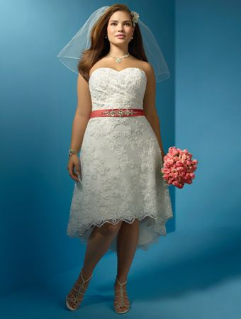 Plus Size Short Second Wedding Dresses with Sleeves