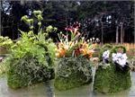 Purse Moss baskets - Set of 3 -1 large, 1 medium,and 1 small lined moss basket