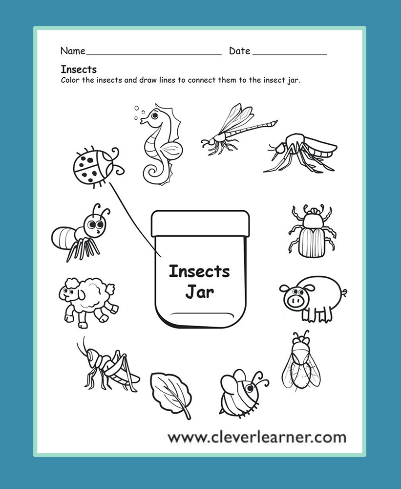 Insects preschool worksheets | Preschool Science Activity ...