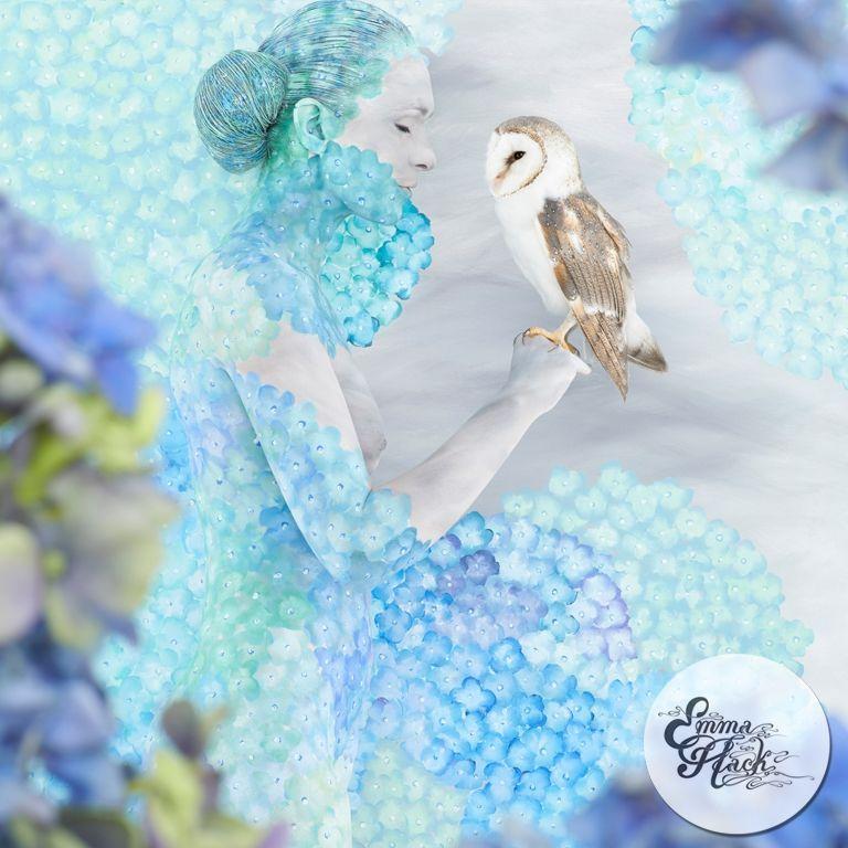 Utopia - Hydrangea Cradled Owl.   120x120cm - 110x110cm - 70x70cm.