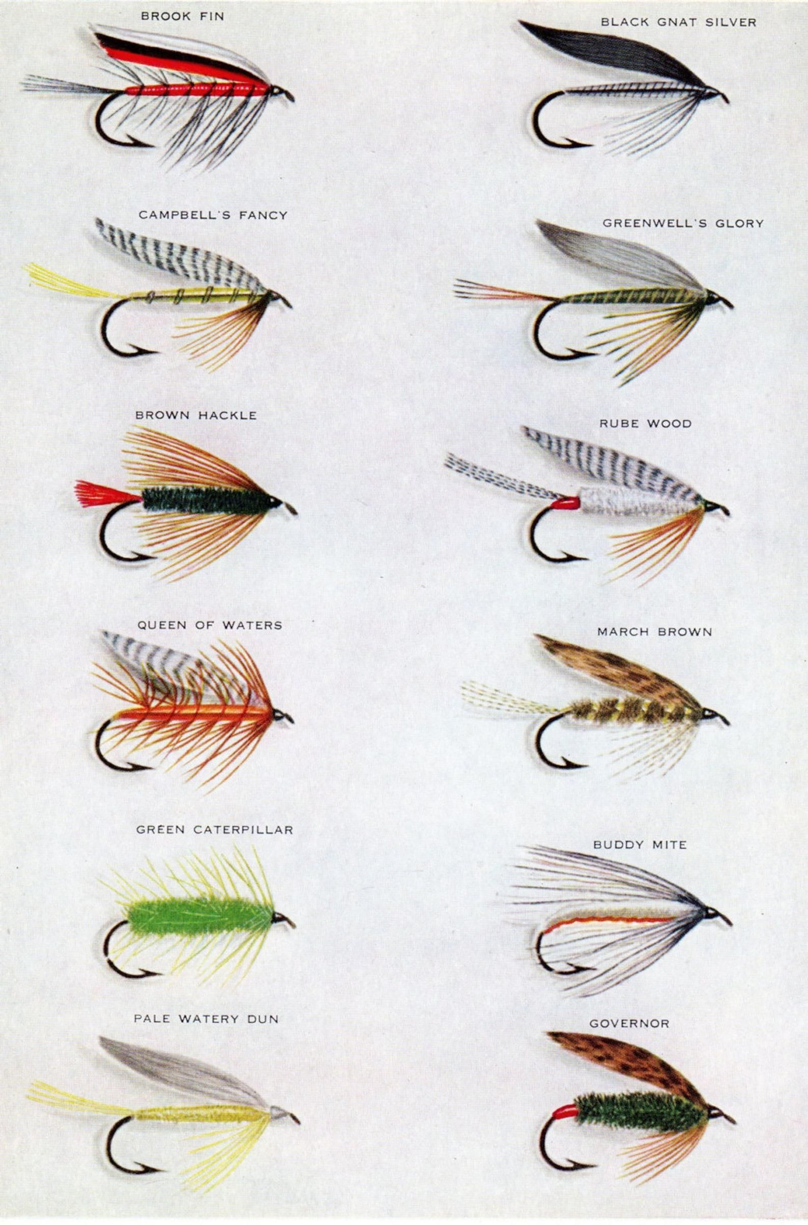 1940 Wet Flies Trout Fly Fishing Flies Sporting Antique Print Matted 11 X 14 Angler Fisherman Fly Fishing Flies Trout Fly Fishing Fly Fishing Art