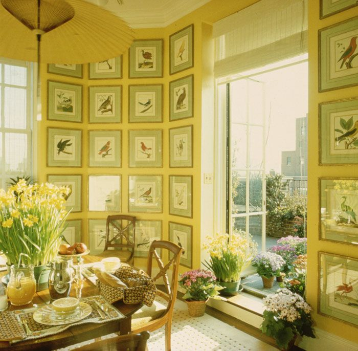 A sun filled breakfast room overlooking Park Avenue. Prints of birds in a gallery wall