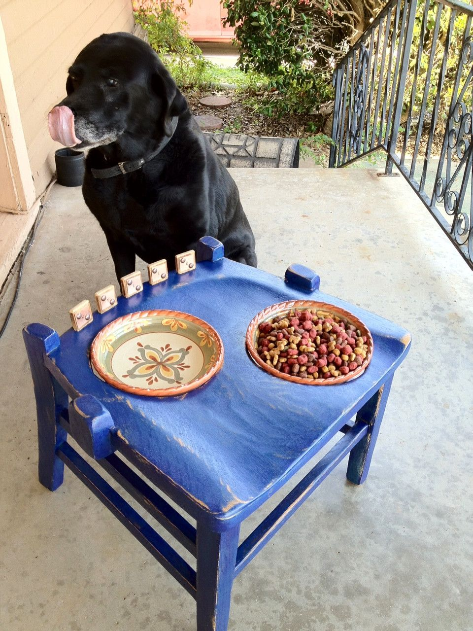 Wood chair turned into blue elevated dog bowl holder | For