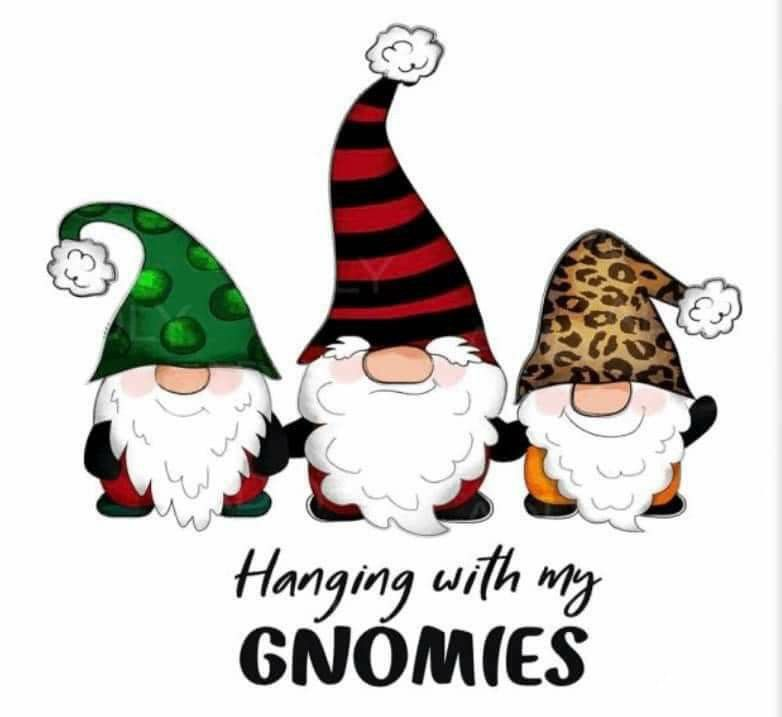 Christmas Events Gilbert 2021 Pin By Cheryl Gilbert On Gnomes In 2021 Funny Christmas Ornaments Baby Girl Quilts Gnomes Diy