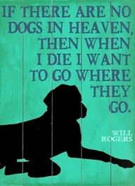 Will Rogers on Heaven Quote - this applies to not only my dogs Ive had, but also every other pet Ive owned too.