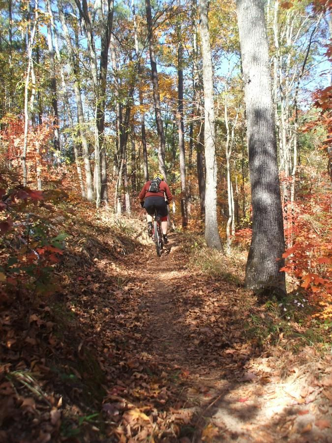 37 Miles Of Fun At Forks Area Trail System Fats In Clarks Hill