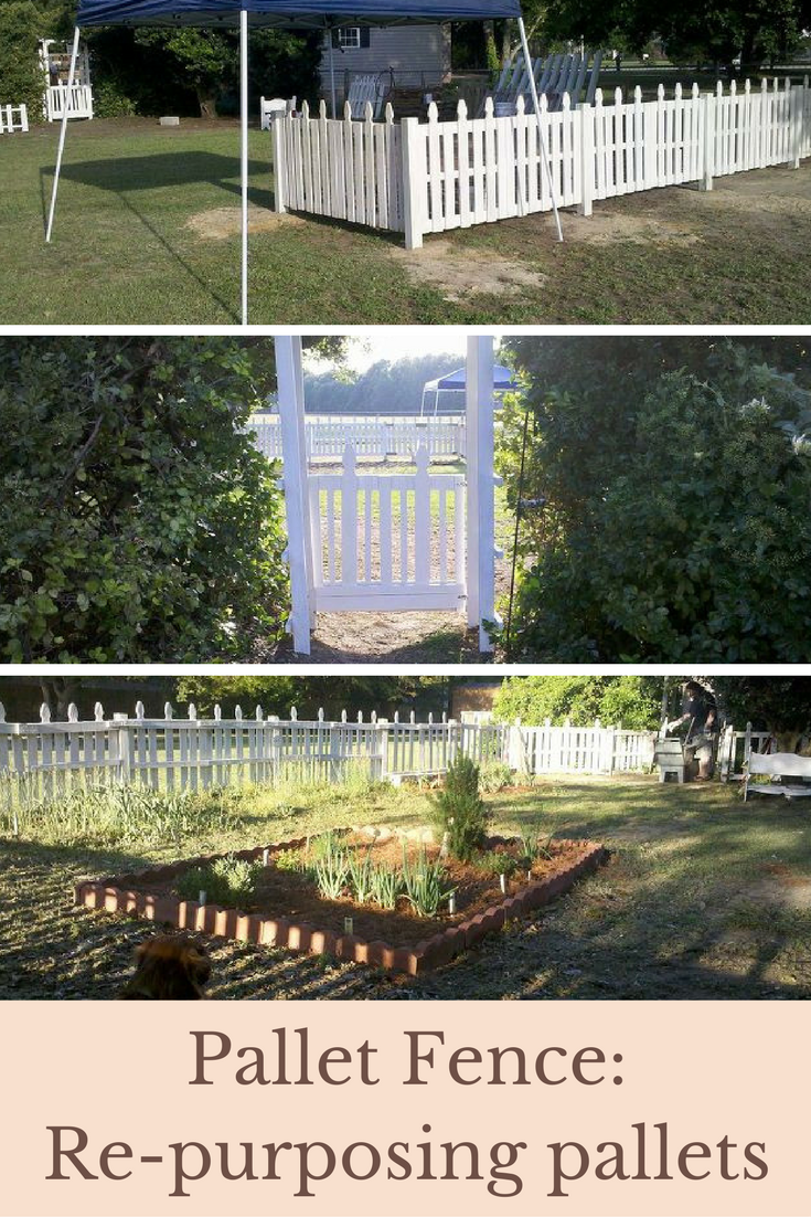 Pallet fence repurposing pallets this is a great idea for a