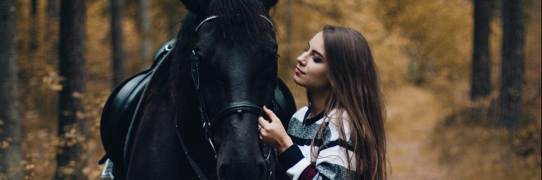 rencontre passionné chevaux annempillsworth.com Equitation