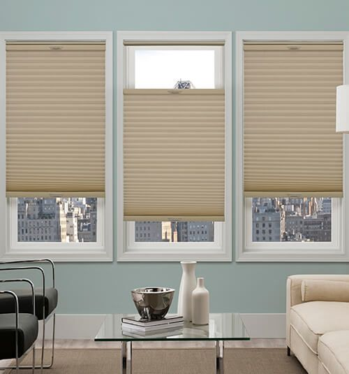 Comfortex Honeycomb Cellular Shades Blackout Living Room Windows Guest Bedroom Makeover Cellular Shades