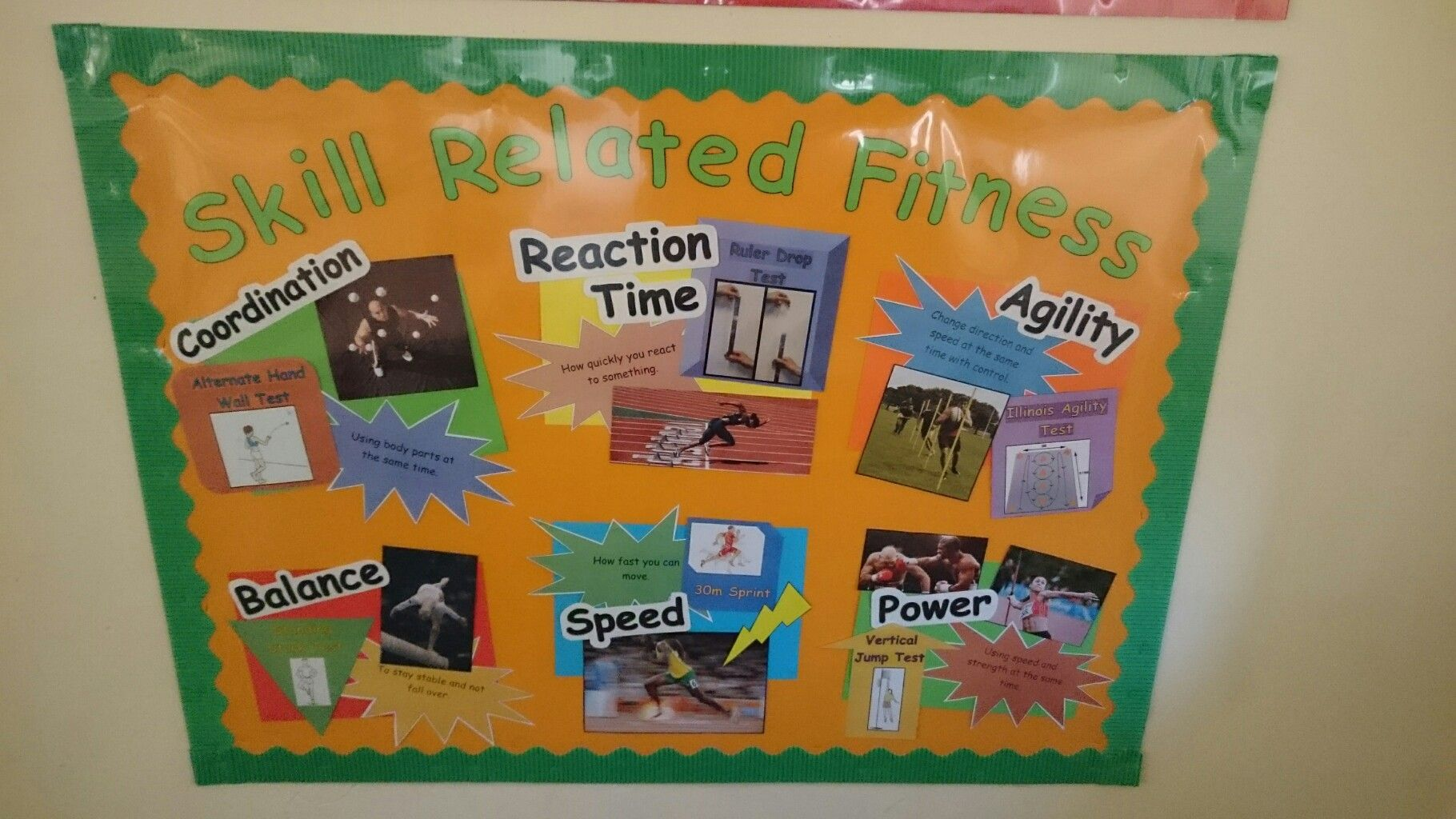 Skill Related Fitness PE Display Board by Alex