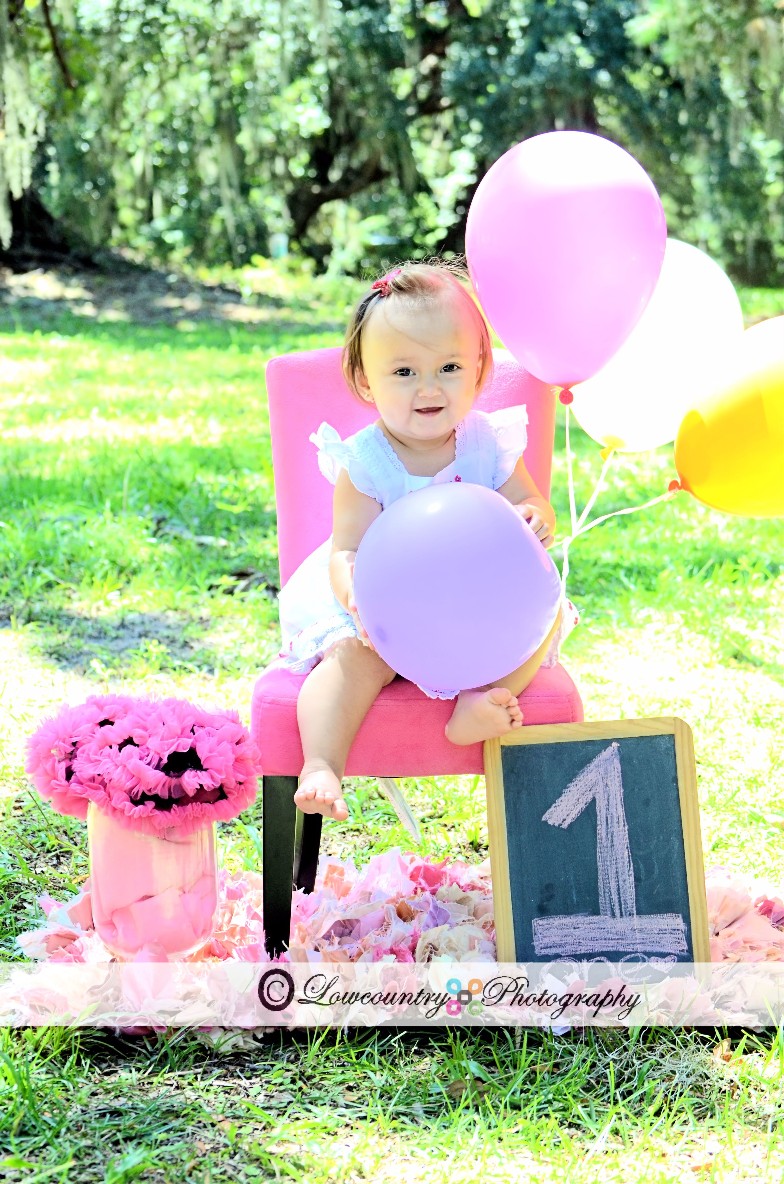 First Birthday photo shoot idea...I can DIY this with one ...