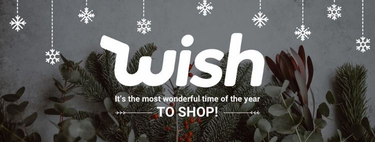 100 Wish app, Coding, Promo codes