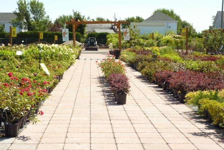Articles A Propos De Centre Jardinage Granby Sur Quebec Vert La Revue Des Professionnels De L Horticulture