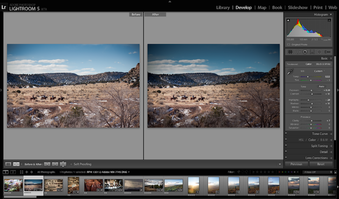photo editing adobe photoshop elements download