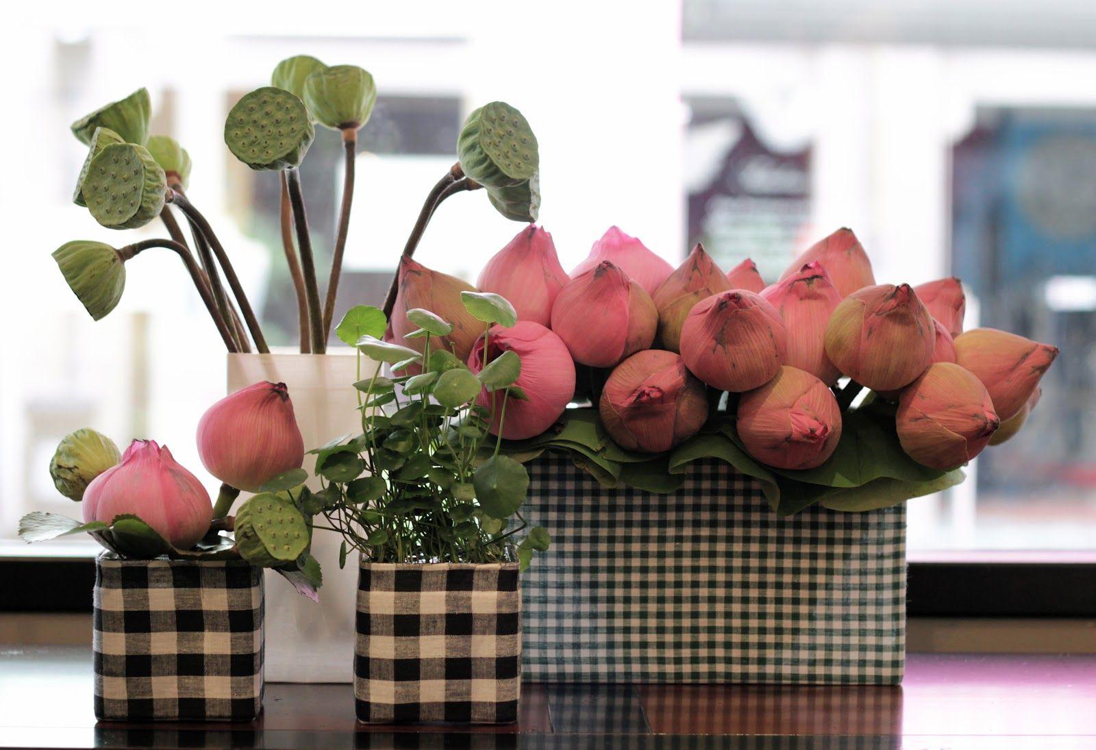 Love The Quirky Lotus Flower Arrangement Random Stuff Pinterest