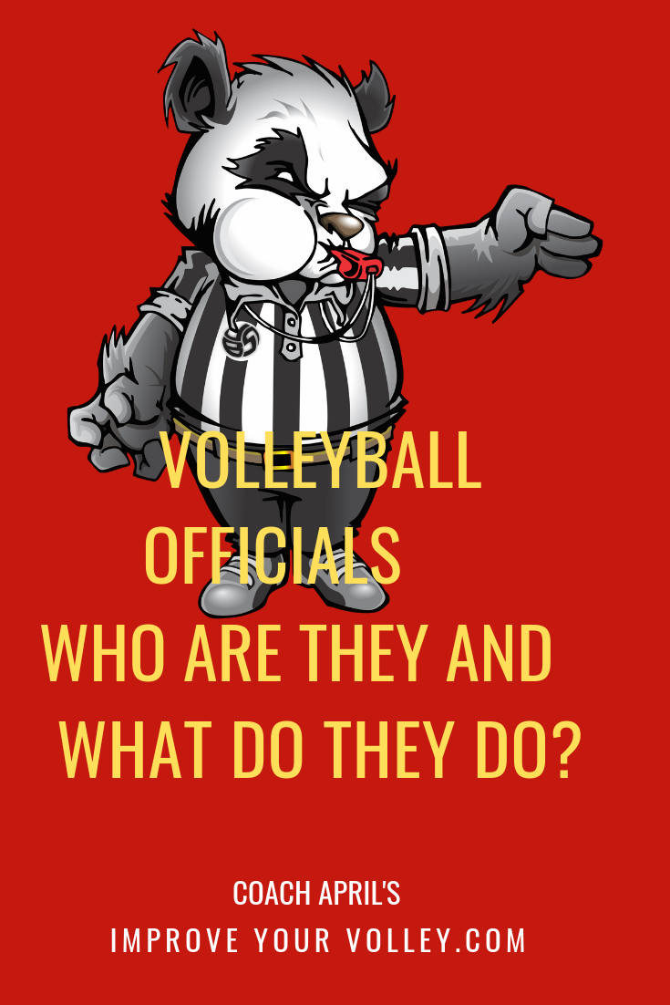 Volleyball Officials Referees And Linesmen The Who What Why And How With Images Volleyball Rules Volleyball Net Height Volleyball Court Size
