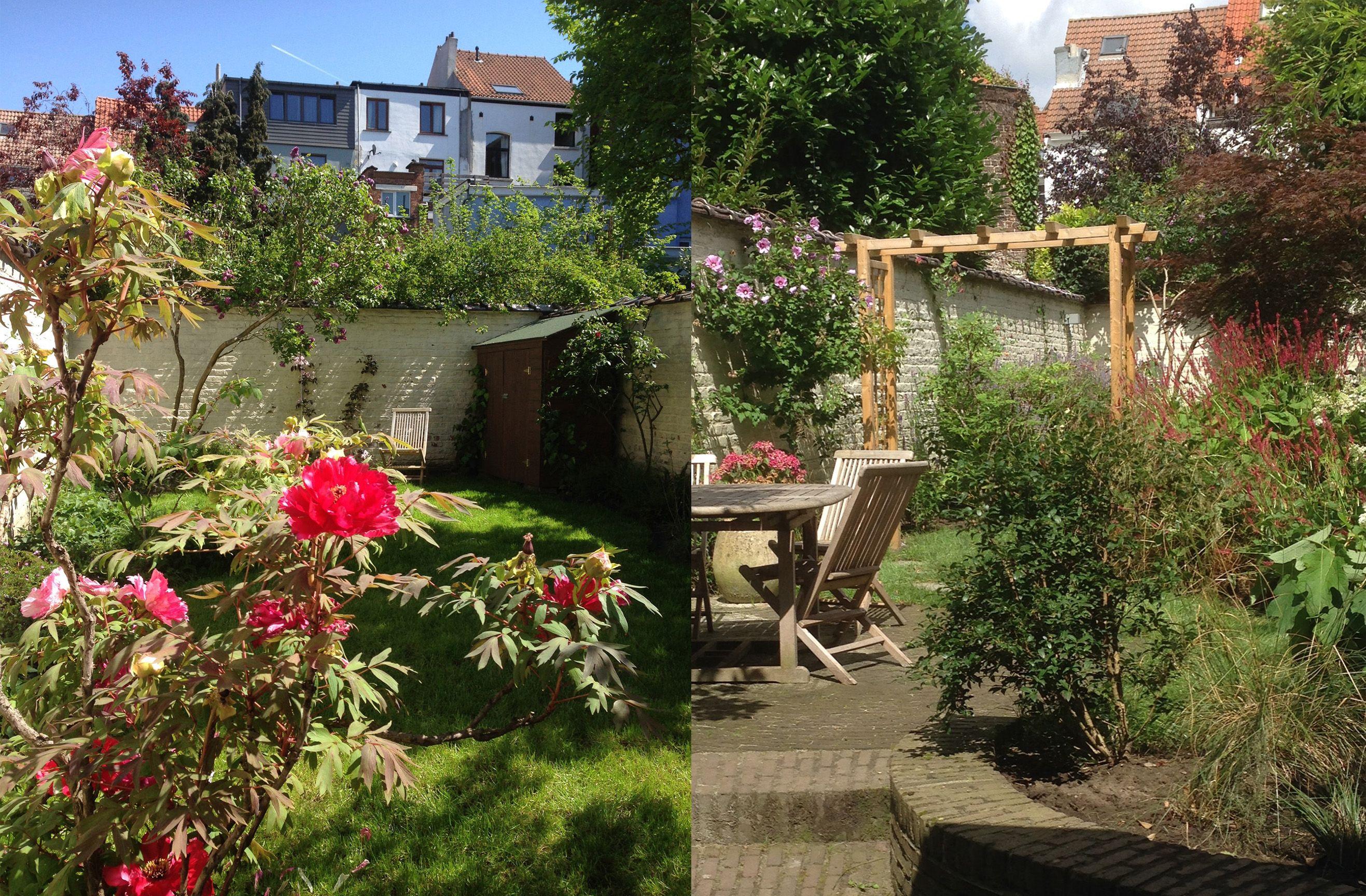 Jardin De Ville Bruxelles Amenagement Jardin Jardinage Urbain Creation Jardin