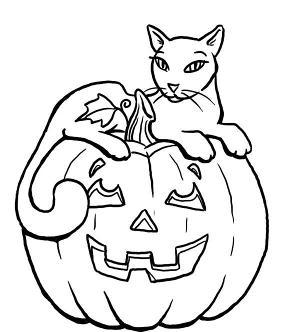 Pumpkin Halloween Black Cat Coloring Pages For Kids | 00 ...