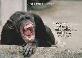 spreuken collegialiteit collegialiteit   Quote   Quotes, Santa en Teamwork spreuken collegialiteit