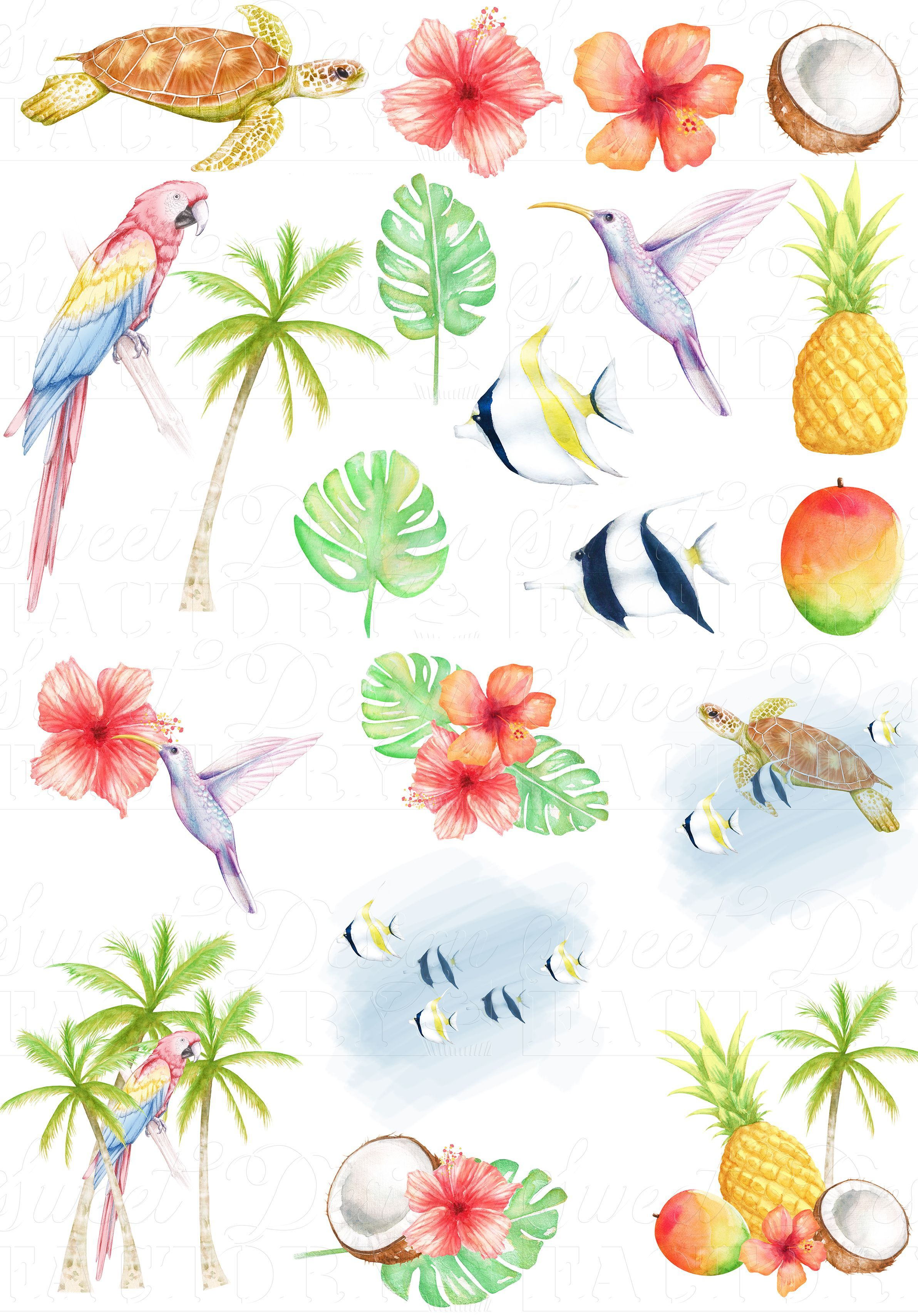 tropical clipart summer clipart Original collection of