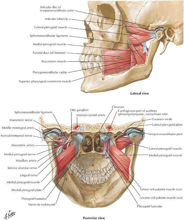 Face clic pe tratamentul articular Durere la nivelul articulațiilor gleznei în timp ce rulează