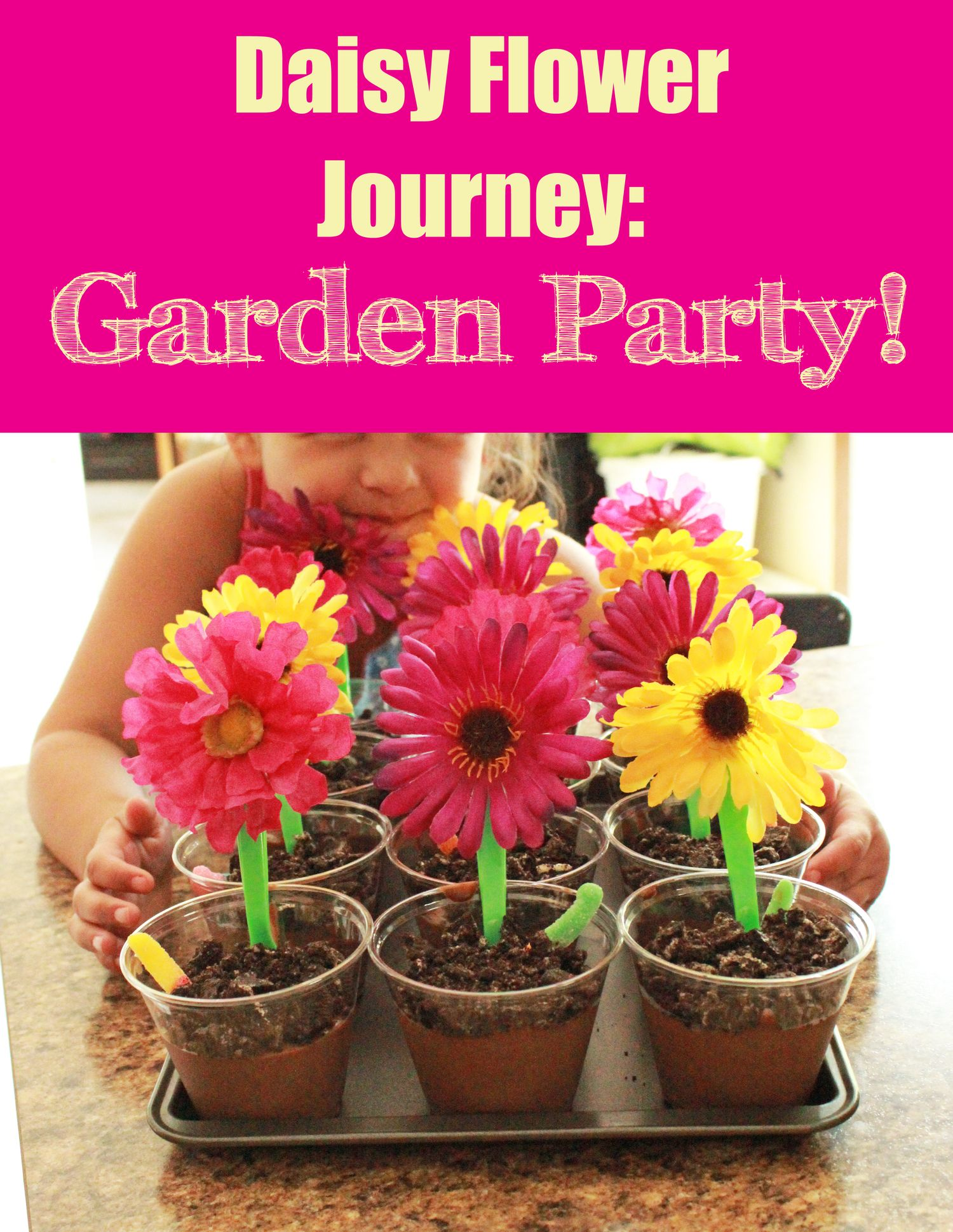 daisy flower garden journey: garden party!!!   girl scouts   daisy