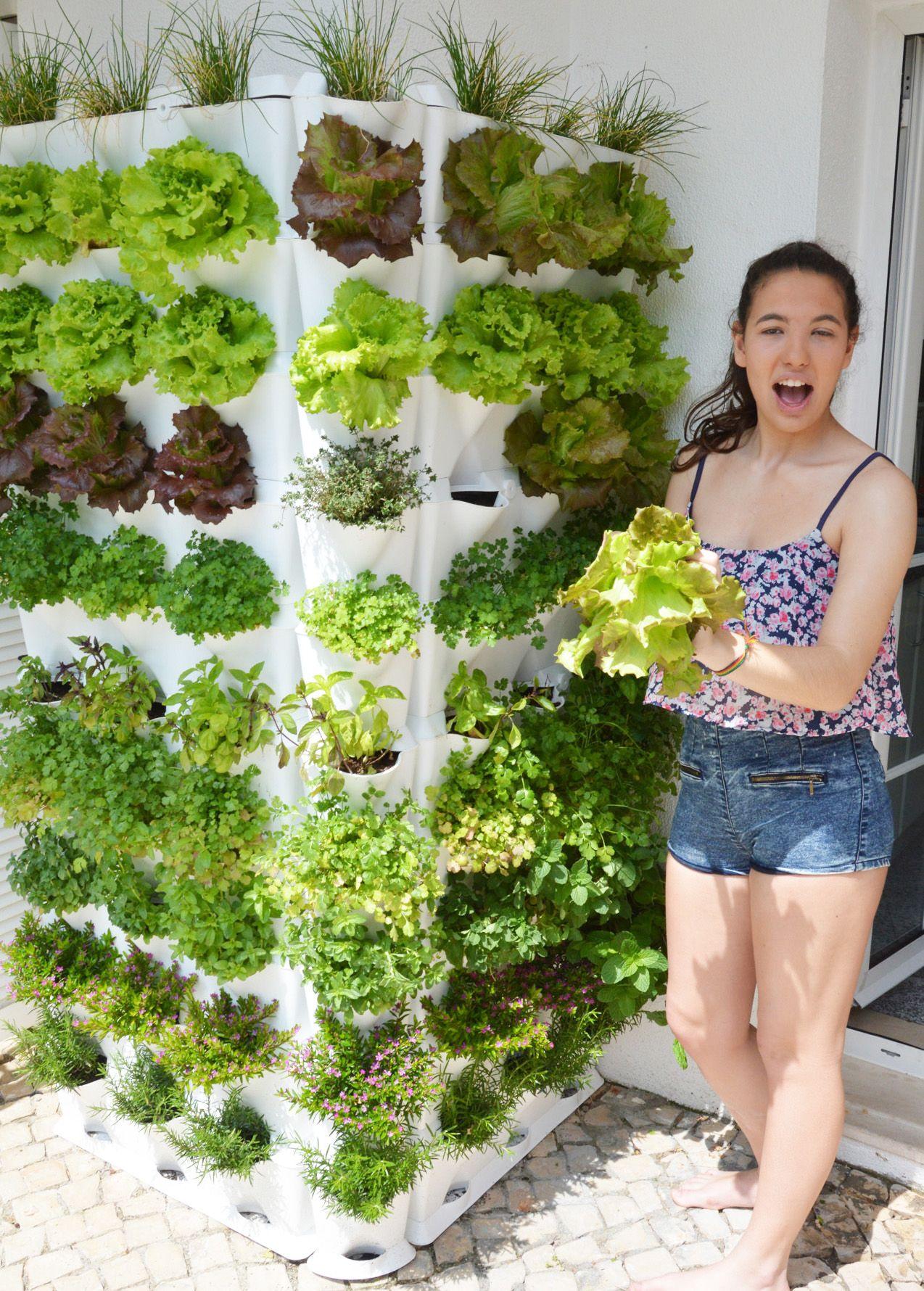 design3000 drei module f r einen minigarten mit neun pflanzen verticalgarden vertikaler. Black Bedroom Furniture Sets. Home Design Ideas