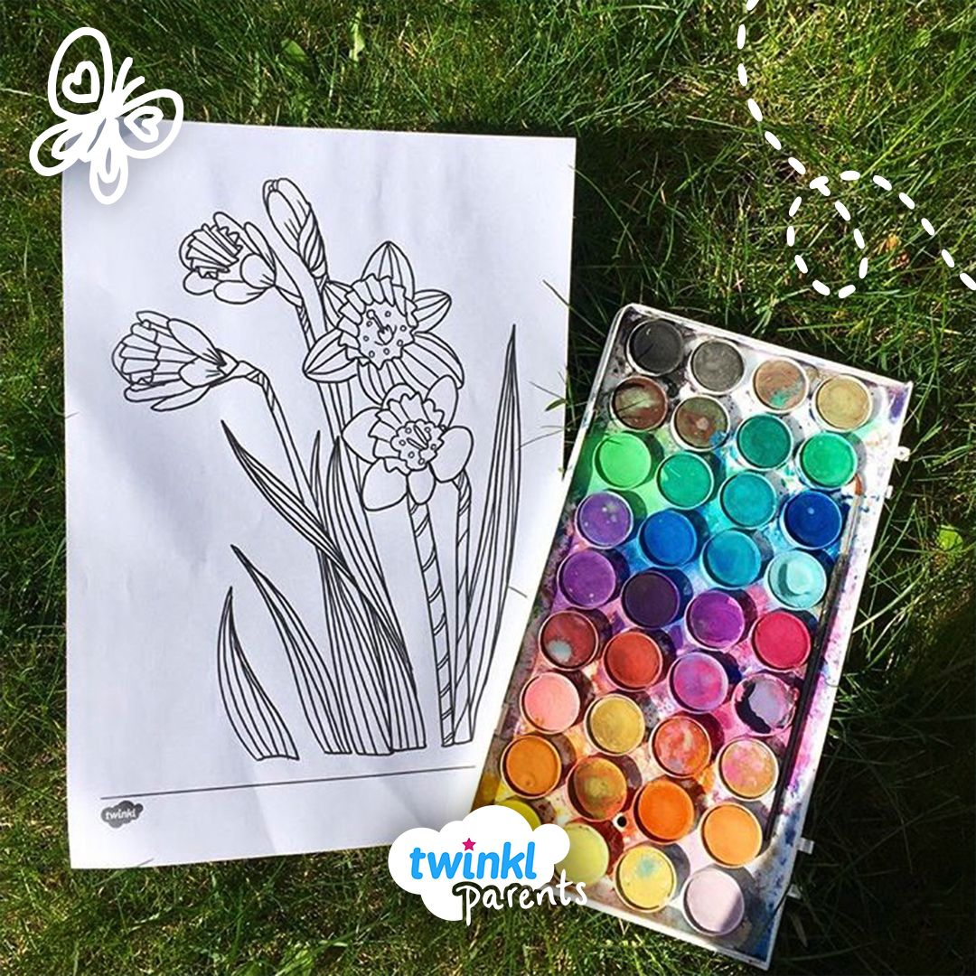 Daffodil Colour By Number Sheet | Mindfulness colouring ...