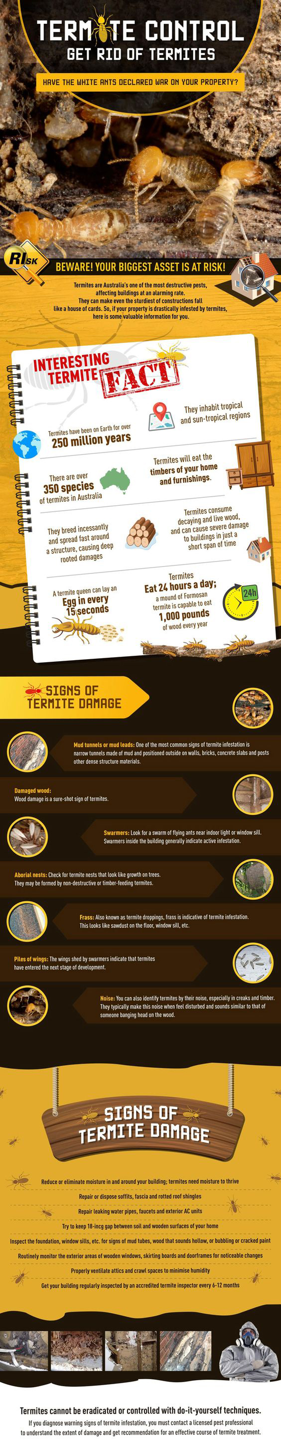 Termite Control How To Get Rid Of Termites Termitecontrol Dubai Termite Control Termites Termite Pest Control