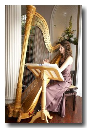 Hire a harpist or string quartet for your medieval wedding.