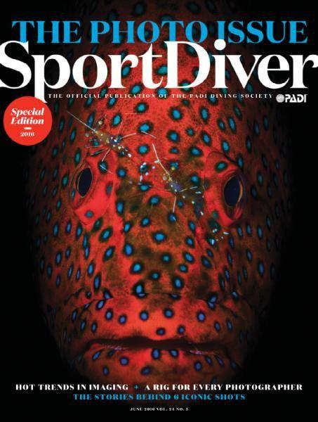 Download Free True Pdf Magazines Boards Watersports Pdf Magazines Water Sports Free Download