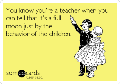 Teacher Ecards Teaching Humor Teacher Humor Teaching Quotes