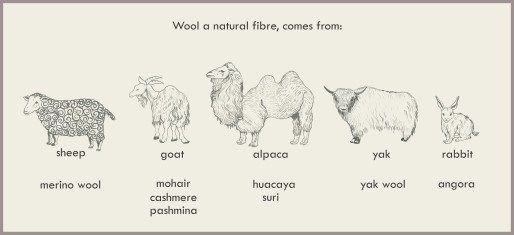 Image result for illustration of felted wool fibers