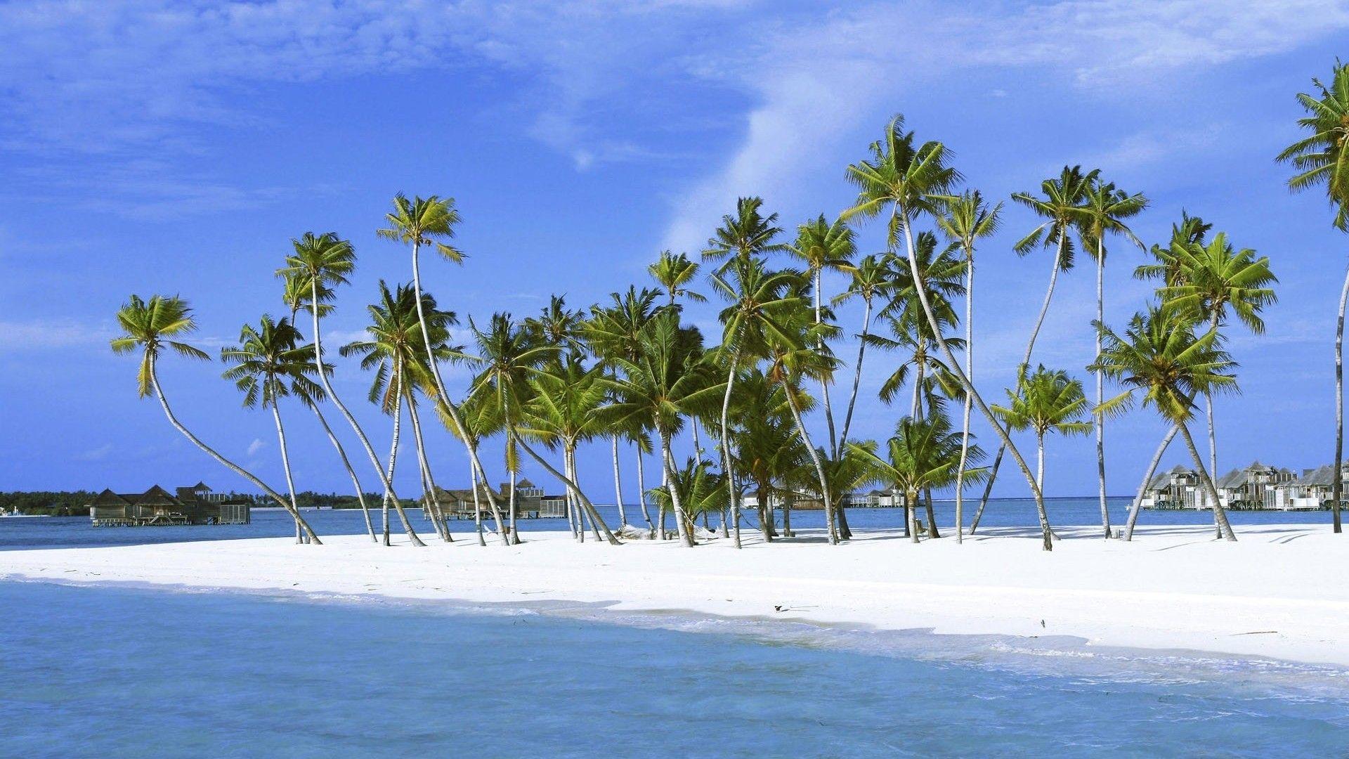 Fond d cran hd plage ile paradisiaque plages de r ve pinterest - Image d ile paradisiaque ...