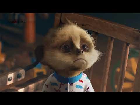 compare the meerkat market baby oleg funny insurance ...