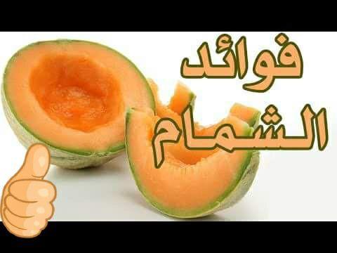 فوائد البطيخ الاصفر البطيخ الأصفر البطيخ بجميع أنواعه وألوانه من أشهى أنواع الفاكهة وأكثرها انتشارا وعلى الرغم من أن البطيخ الأحمر هو Fruit Tasting Food