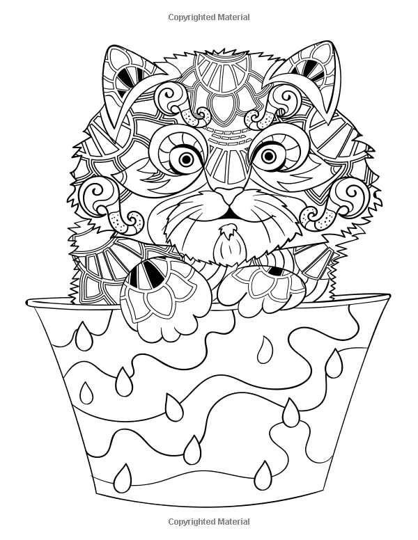 http://www.amazon.com/Creative-Fancy-Cats-Coloring-Book/dp ...