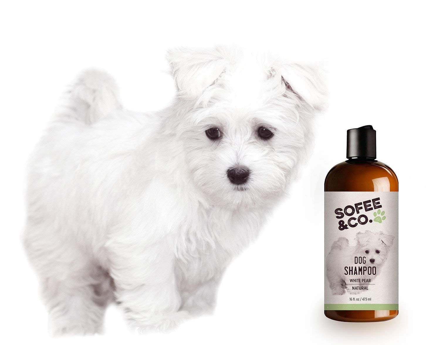 Best Shampoo For Goldendoodle Puppy Top 5 Picks In 2020 Dog Shampoo Natural Dog Shampoo Goldendoodle