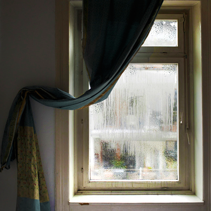 Tip Make Sure You Seal The Gaps Around Windows And Doors Because Unwanted Air And Moisture Can Cause Mold Warpin House Windows Windows And Doors Window Seal