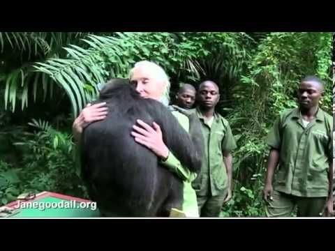 VIDEO The touching moment Jane Goodall is hugged by ...