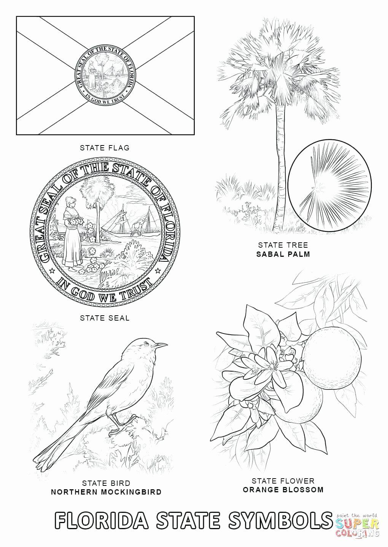 Magnolia Flower Coloring Page Di 2020 Dengan Gambar