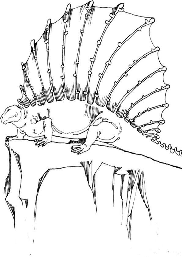 ausmalbilder dinosaurier 23 ausmalbilder gratis