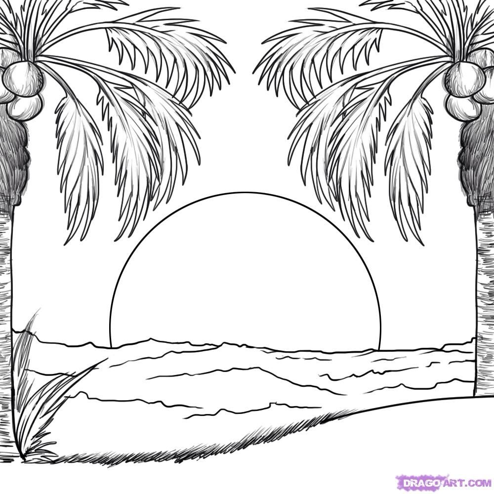 Sunrise/set Beach drawing, Outline drawings, Palm tree
