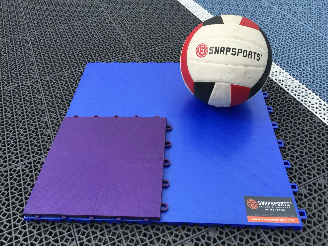 Snapsports 50 50 Volleyballsurface In Blue Compared To The Much Smaller Imitation Court In Purple Officialcourt 70 Lessseams At Home Gym Volleyball Sports