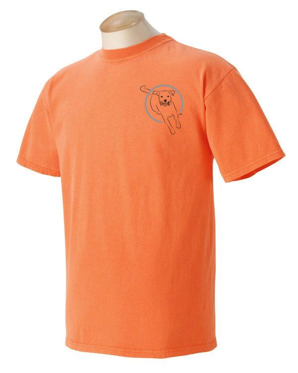 Danish Swedish Farmdog Gaiting Garment Dyed Cotton T-shirt Ek85h8BF87