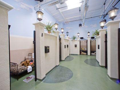 Barkley Pet Hotel In La Most Luxurious Hotels Los Angeles Cbs