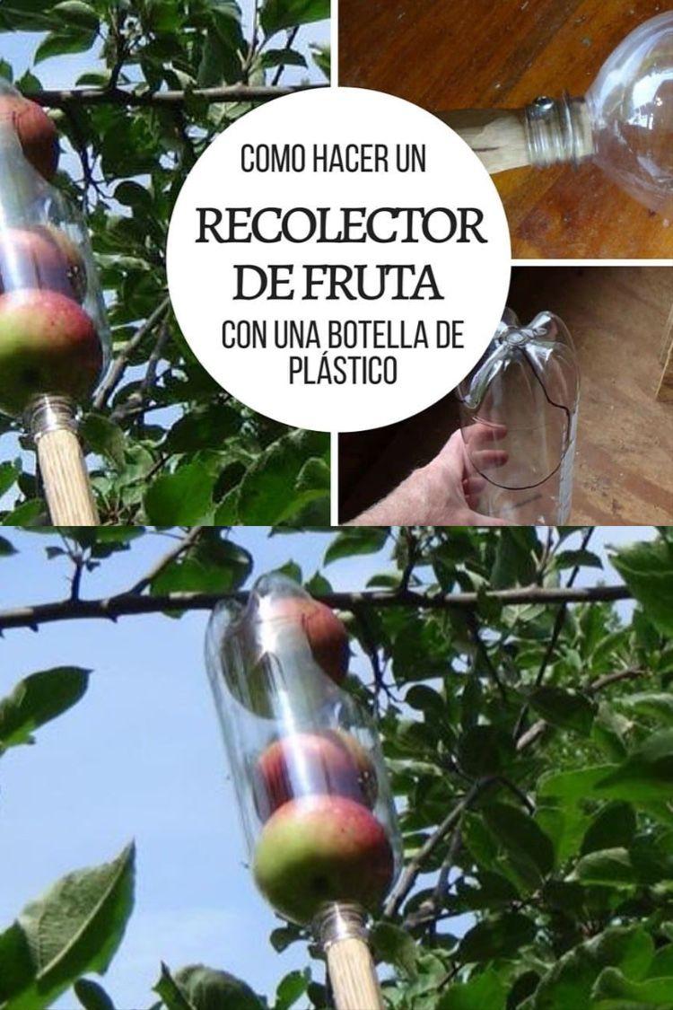 Cómo Hacer Un Recolector De Fruta Con Una Botella De Plástico Jardín De Productos Comestibles Trucos De Jardinería Herramientas De Jardineria